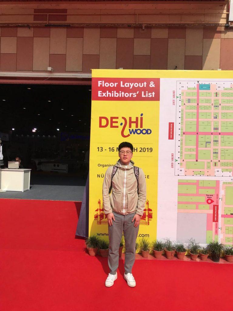 delhi wood show